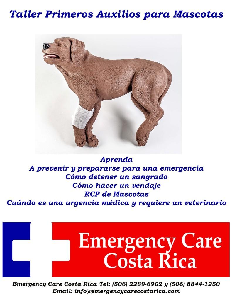 Taller Primeros Auxilios para Mascotas copy