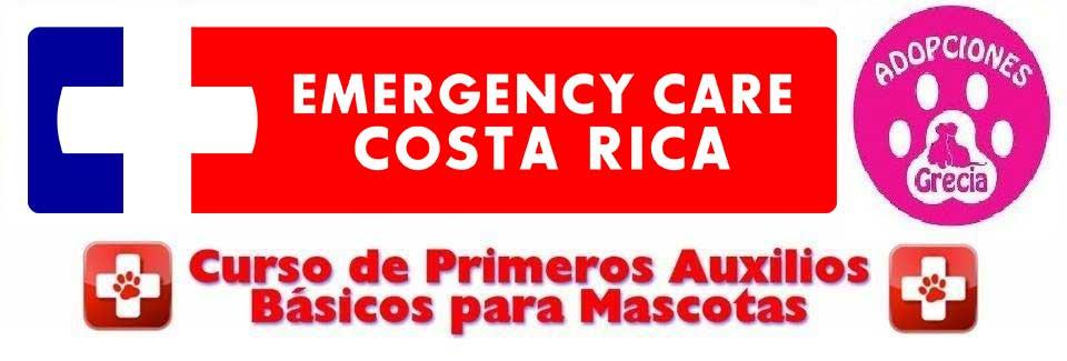 Post_PA_Basico_para_Mascotas